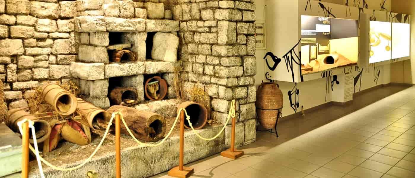 Leonardo Mediterranean Hotels & Resorts - Bienenmuseum